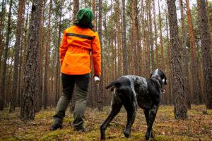 Klimageschädigter Wald: Mehr  Forstpersonal im Kreis Kaiserslautern