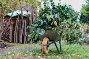 Neuer Service der Stadtbildpflege: Grünschnitt-Abholung