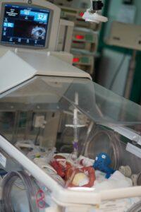 Frühgeborene im Blick